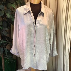 🎈apparenza silver button down blouse
